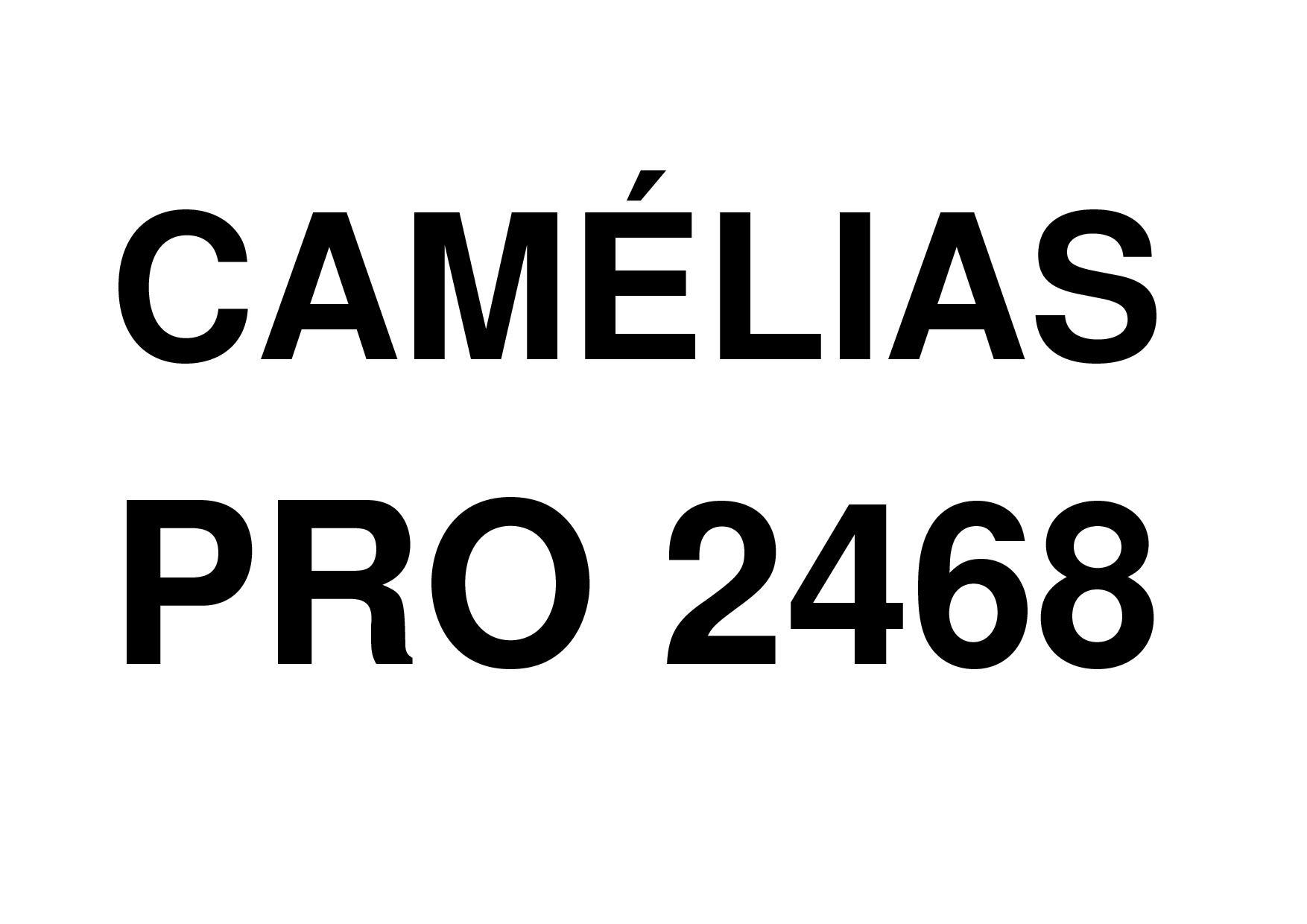 Camelias PRO 2468
